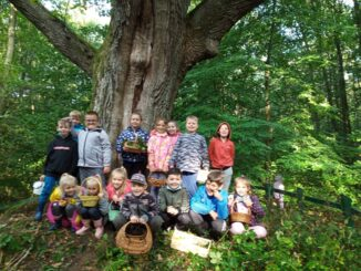 Z okazji Dnia Wolnej Sali klasa 2 a i 2 d wybrały się na lekcję przyrodniczą do pobliskiego lasu.